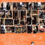 Small rigid exile Chronicles 02-2 became Beijing Princess dog part 2