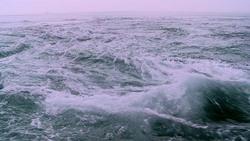 海005(ストックムービーHD素材)